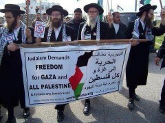 gaza,pcf