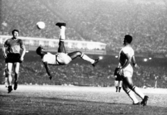 coupe du monde 1962.jpg