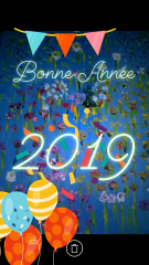 bonne année 2019b.png