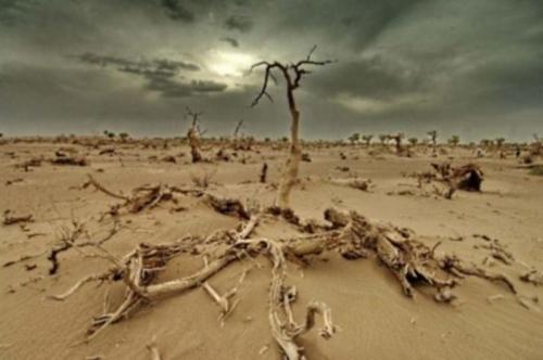 changement_climatique.jpg